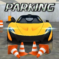 Activities of Real Car Parking