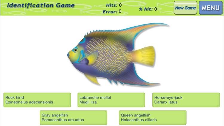 Marine Fishes screenshot-3