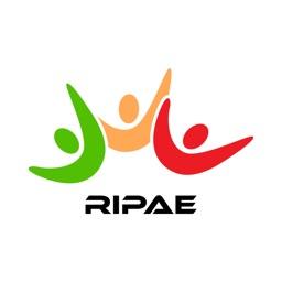 Ripae