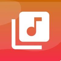 Bm7 Music: Meet Me Music