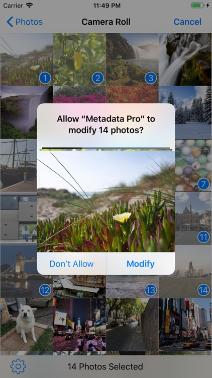Metadata Pro screenshot-6