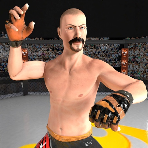 Ultimate Boxing MMA Warrior