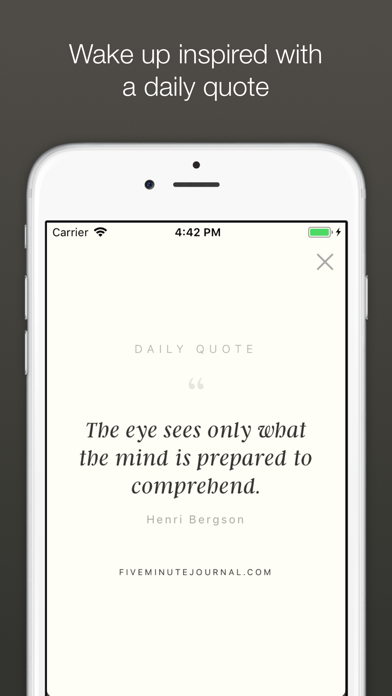 Five Minute Journal iphone ekran görüntüleri