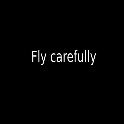 Fly carefully