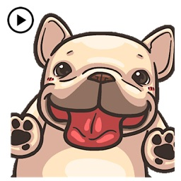 Animated Funny French Bulldog