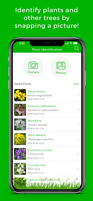 Plant Identification & Info on the App Store