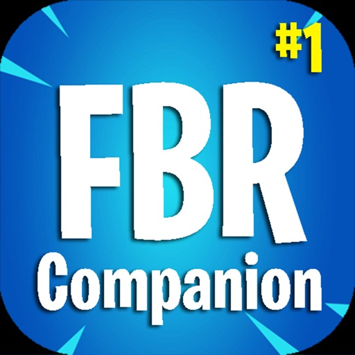 Companion for Fortnite BR