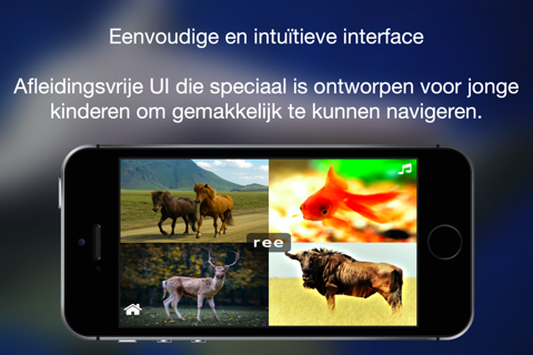 ABC Dutch Dieren - náhled