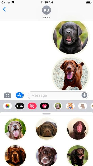Lovely Labrador Sticker Pack screenshot #3