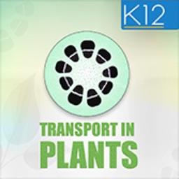 Transport in Plants Biology