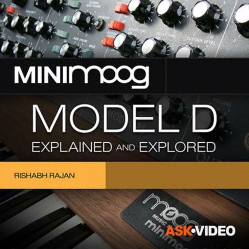 Minimoog Model D Course By mPV
