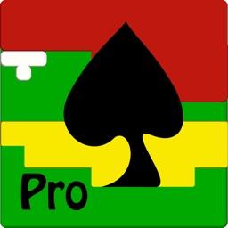 Blackjack 101 Pro