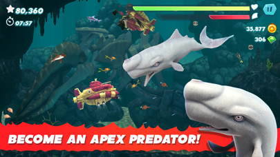 Hungry Shark Evolution for windows pc