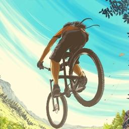 Bike Race Tournament