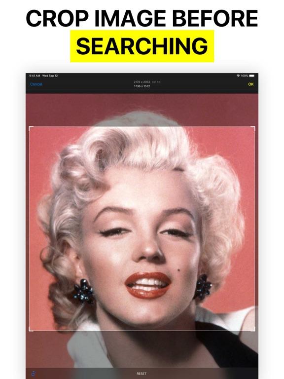 Reversee - Reverse Image Search screenshot