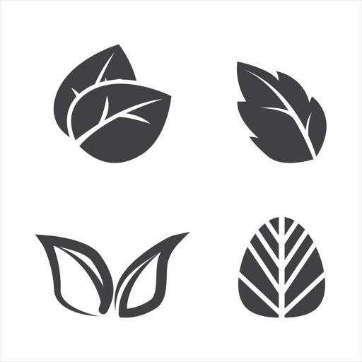 LeafTypesSt
