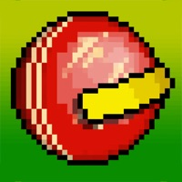 Codes for Sandy Balls Cricket Hack