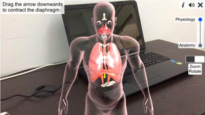 AR Respiratory system physiolo screenshot 4