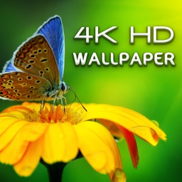 HD Wallpapers - 4K UltraHD