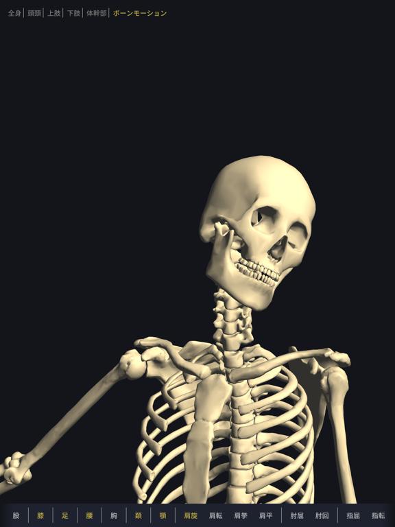 3D運動解剖学 teamLabBodyのおすすめ画像5