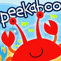 Peekaboo Ocean - Who's Hiding?