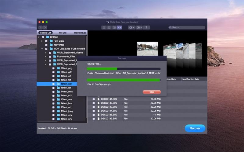 Stellar Data Recovery скриншот программы 6