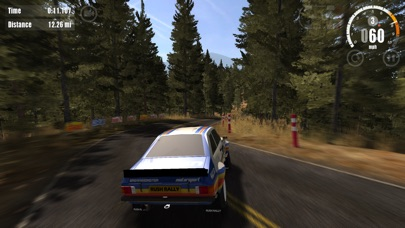 Rush Rally 3 screenshot 8