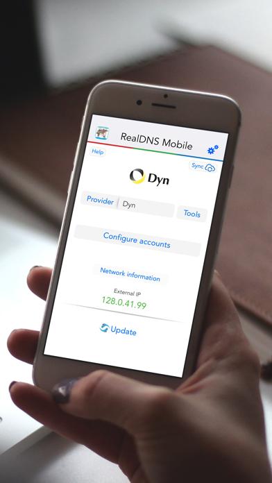 RealDNS - Dynamic DNS screenshot one