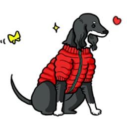 Black Saluki Dog Sticker