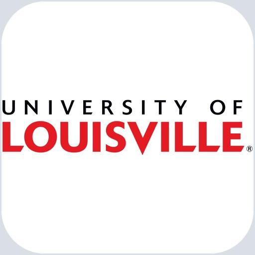 U of Louisville Experience