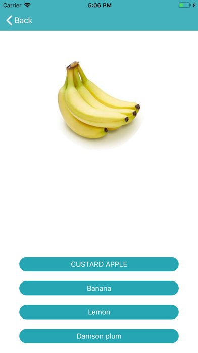 Fruit Learner screenshot #3