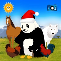 Codes for Find Them All: Animal World Hack