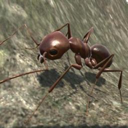 Ant Simulation 3D