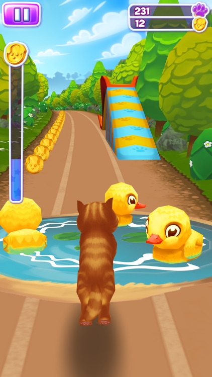 Pet Run - Puppy Dog game screenshot-3
