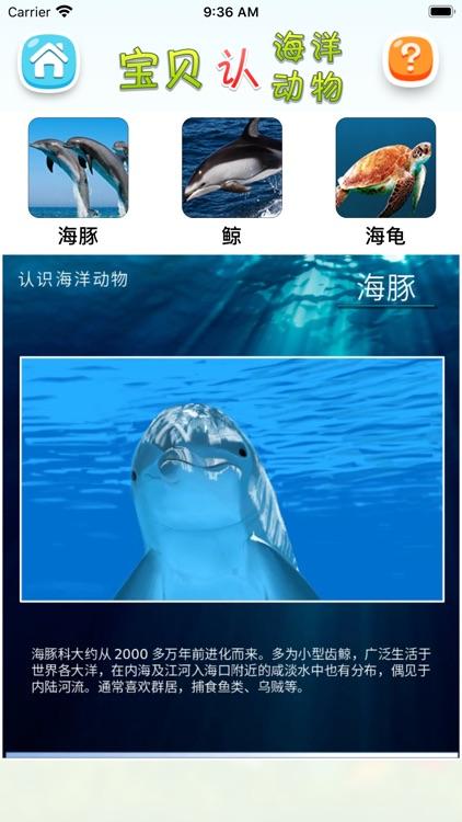 认海洋动物