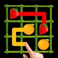 Activities of Fruit Bridge