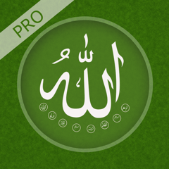 Names of Allah Pro