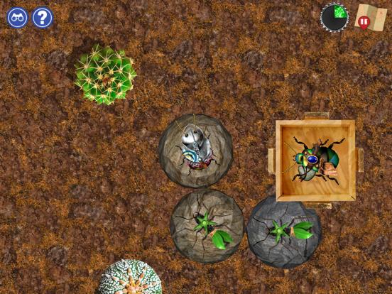 Bug Mazing