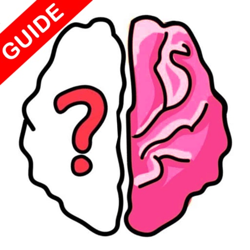 Brain Out Guide and Tips