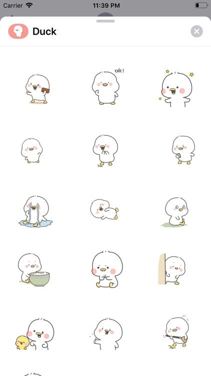 Lovely Duck Animated Stickers
