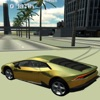 Extreme Racing Car Driver 3D