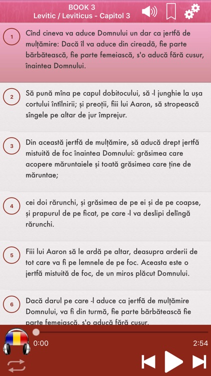 Romanian Bible Audio mp3 Pro screenshot-3