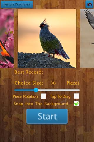 Birds Jigsaw Puzzles - Titan - náhled