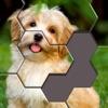 Hexa Jigsaw Puzzle™ - iPhoneアプリ