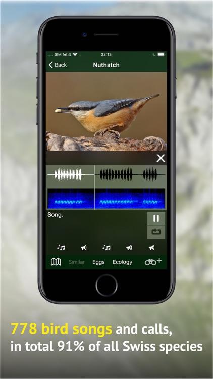 All birds CH - photo guide screenshot-3