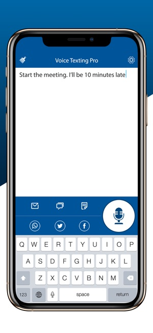 Voice Texting Pro on the App Store