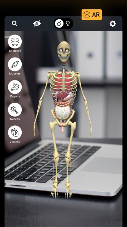 Discover Human Body AR screenshot-0
