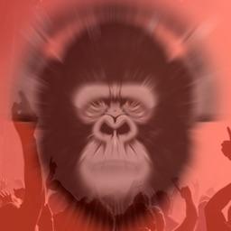 GorillaPlayer - Music Player