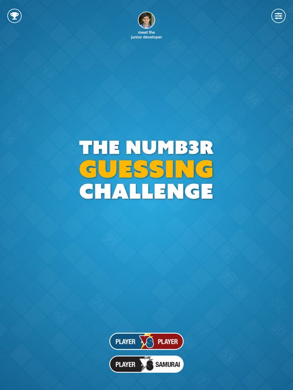 The Number Guessing Challenge Screenshots