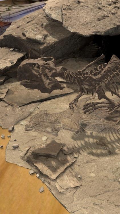 Famous Fossil screenshot-4